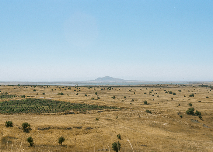 Landscape photo of Israel