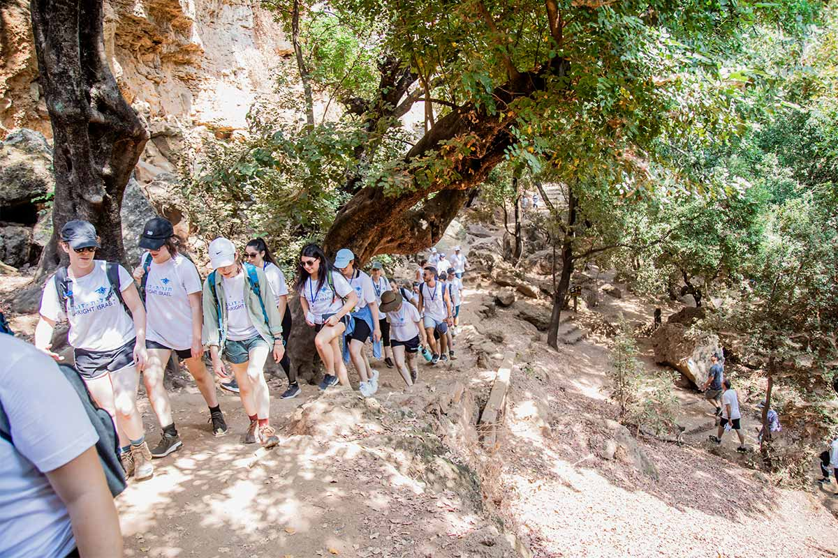 A Birthright Israel group hiking on their trip in a forest.